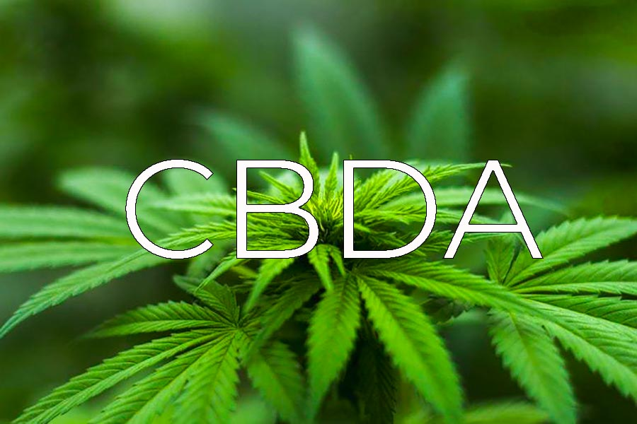 Acido cannabidiolico, cos'è